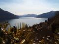 Lago Maggiore Brissago.jpg