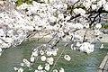 Lake Biwa Canal (5767175848).jpg