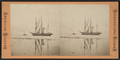 Lake Erie, from Robert N. Dennis collection of stereoscopic views.png