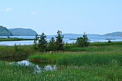 Lake Nipigon.JPG