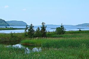 Lake Nipigon - Image: Lake Nipigon