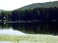 Lake Page - panoramio.jpg