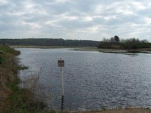 Lake Lafayette - Lake Piney Z