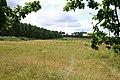 Lambpit Hill, Thetford - geograph.org.uk - 517882.jpg
