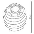 Lamellodisc of Calydiscoides euzeti (Monogenea, Diplectanidae).png