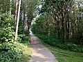 Landschaftsschutzgebiet Wäldchen bei Buer Melle Datei 15.jpg