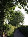Lane past Tudhay - geograph.org.uk - 456904.jpg