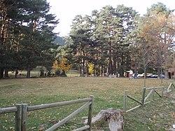 Dehesas de Cercedilla (imagen de Wikipedia)