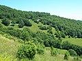 Lazina - panoramio.jpg