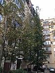Leninsky 83 113 2154 (45707591301).jpg
