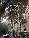 Leninsky 83 113 2165 (30767109777).jpg
