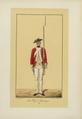 Les Régiments suisses et grisons au service de la France, BNF, PETFOL-OA-467 f29.png