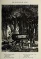 Les Scieurs de long by Courbet.png