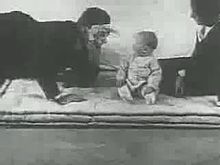 Vaizdas:Little Albert experiment (1920).webm