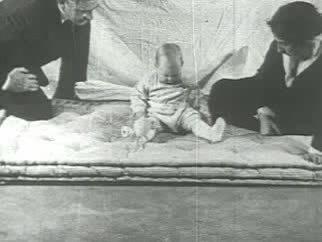 坊や 実験 アルバート の
