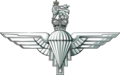 Logo of the Parachute Regiment.png