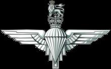 RHQ PARACHUTE REGIMENT DZ FLASH AIRBORNE FORCES PARA