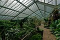 London - Kew Gardens - Princess of Wales Conservatory 1987- Ten Climatic Zones VII.jpg