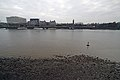 London low tide thames from victoria tower gardens 30.01.2012 14-33-35.2012 14-33-35.JPG