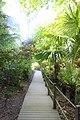 Lost Gardens of Heligan.jpg