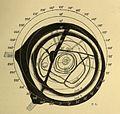 Lowell - Mars (1894) - Plate 2.jpg