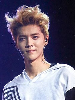 Luhan at the EXO The Lost Planet in Jakarta 14.jpg