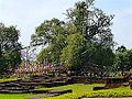 Lumbini - Buildings and Tree, Lumbini (9244148310).jpg