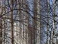 Lyovintsy, Kirovskaya oblast', Russia, 612079 - panoramio (133).jpg
