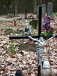 MOs810 WG 14 2016 (Stara Kazmierka, old evang. cemetery) (11).JPG