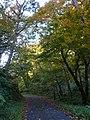 Magata, Mishima, Onuma District, Fukushima Prefecture 969-7519, Japan - panoramio.jpg
