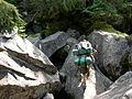 Mahoosuc trail1.JPG