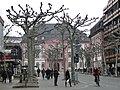 Mainz 29.03.2013 - panoramio (20).jpg