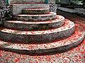 Malinche (Delonix regia) flower petals.jpg