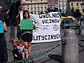 Manifestacja Krakowie w obronie Aslı Erdoğan i tureckich więźniów politycznych 10.jpg