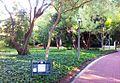 Maynardville Park and theatre - Wynberg - Cape Town - SA 4.jpg