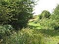Meadows, Pitlessie Burn - geograph.org.uk - 1440148.jpg