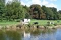 Meadows near Shiplake Lock - geograph.org.uk - 947741.jpg