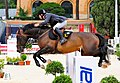 Michael Whitaker and Tackeray, CSIO Rome 2009.jpg