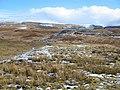 Moorland above Bracadale Point - geograph.org.uk - 132399.jpg