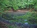 Morasko Meteorite - panoramio.jpg
