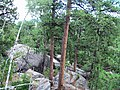 Mount Rushmore UT, SD, USA - panoramio (5).jpg