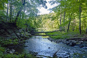 Saw Kill (Hudson River) - Image: Mouth of the Saw Kill, Annandale, NY