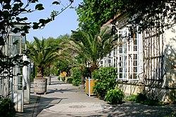 Botanischer Garten Münster Wikipedia