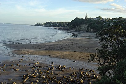 How to get to Murrays Bay with public transport- About the place