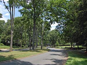 Myers Park (Charlotte) - Myers Park neighborhood, Charlotte, NC