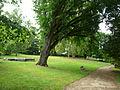 Nérac parc Laubenheimer.JPG