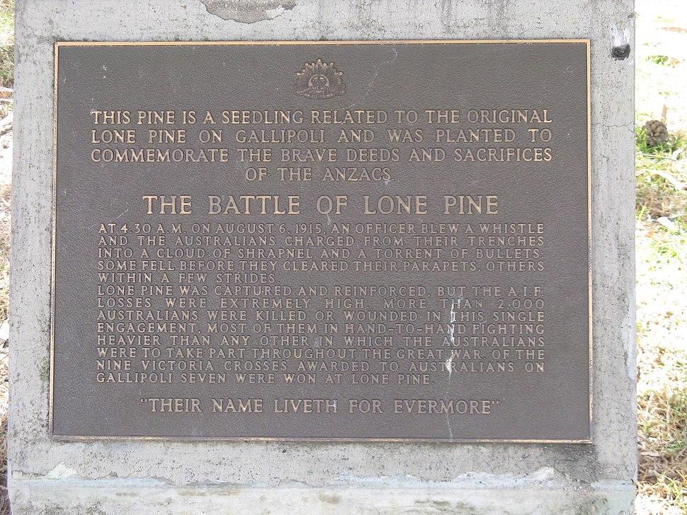 NWMSA-WWI-LonePine