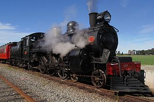 NZR A class No. 428 at Glenmark Station in Waipara.jpg