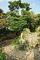 Nakagusuku Castle21n3104.jpg