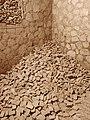 Narbonne - Horreum romain - 20151218 (2).jpg